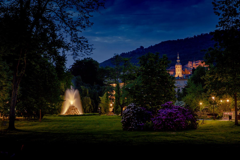 Frühling Baden-Baden Lichtentaler Allee Rhododendron Brunnen nachts